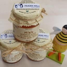 50000 api per la ricerca - miele
