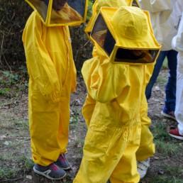 apinfesta bambini visita apiario