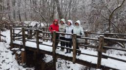 volontari bosco inverno